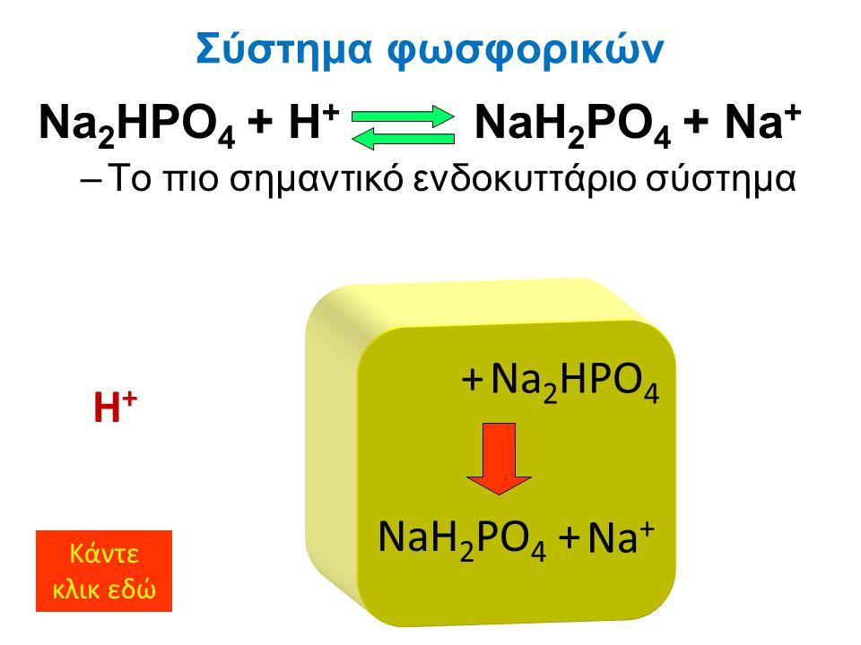 Na2HPO4 + H+ NaH2PO4 + Na+ + Na2HPO4 H+ NaH2PO4 + Na+