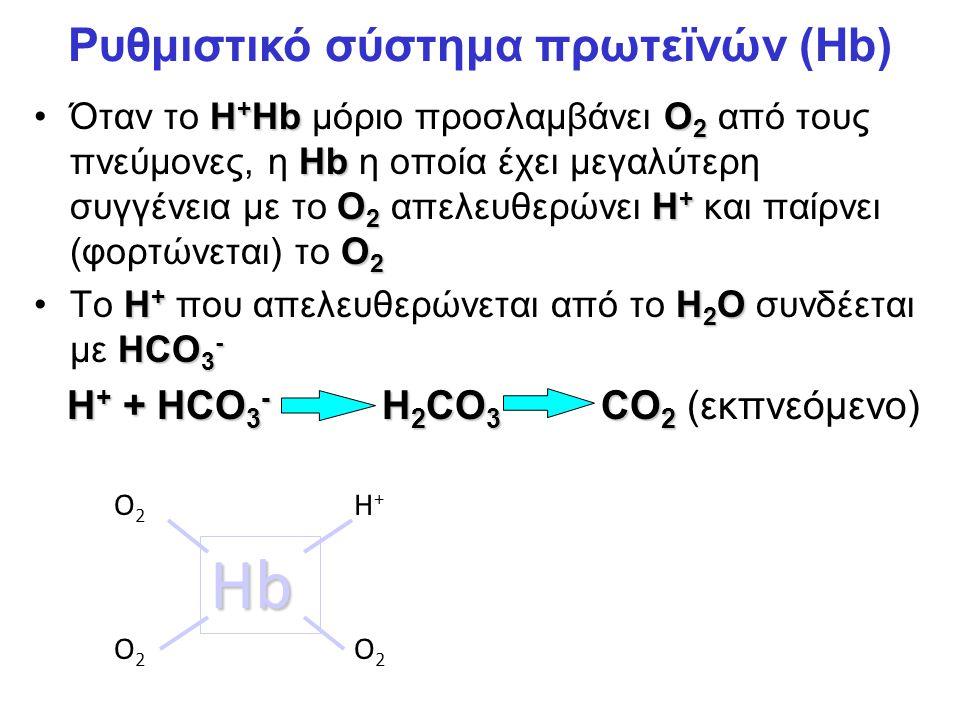 Ρυθμιστικό σύστημα πρωτεϊνών (Hb)