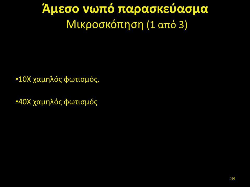 Άμεσο νωπό παρασκεύασμα Μικροσκόπηση (2 από 3)