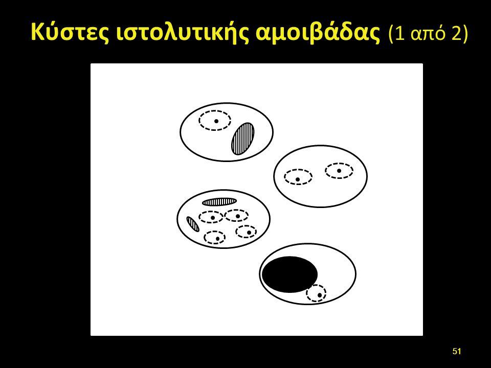 Κύστες ιστολυτικής αμοιβάδας (2 από 2)