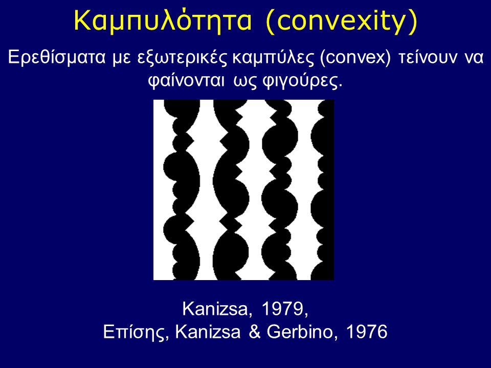 Καμπυλότητα (convexity)