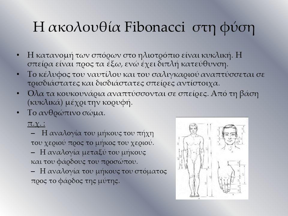 Η ακολουθία Fibonacci στη φύση