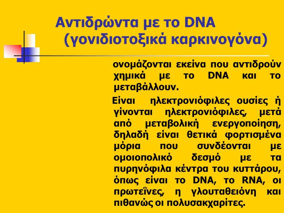 Αντιδρώντα με το DNA (γονιδιοτοξικά καρκινογόνα)