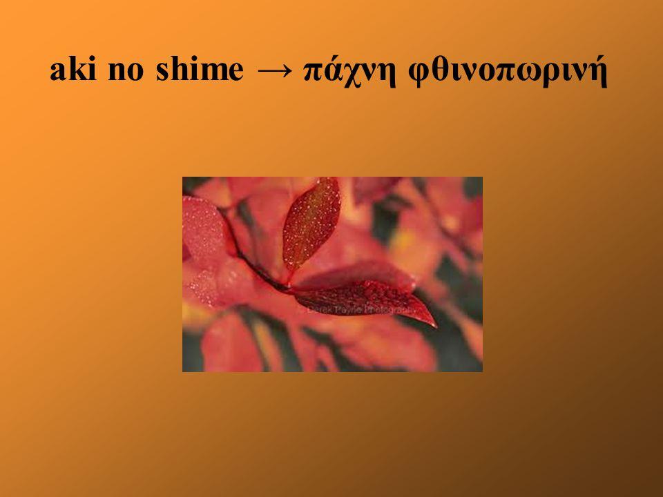 aki no shime → πάχνη φθινοπωρινή
