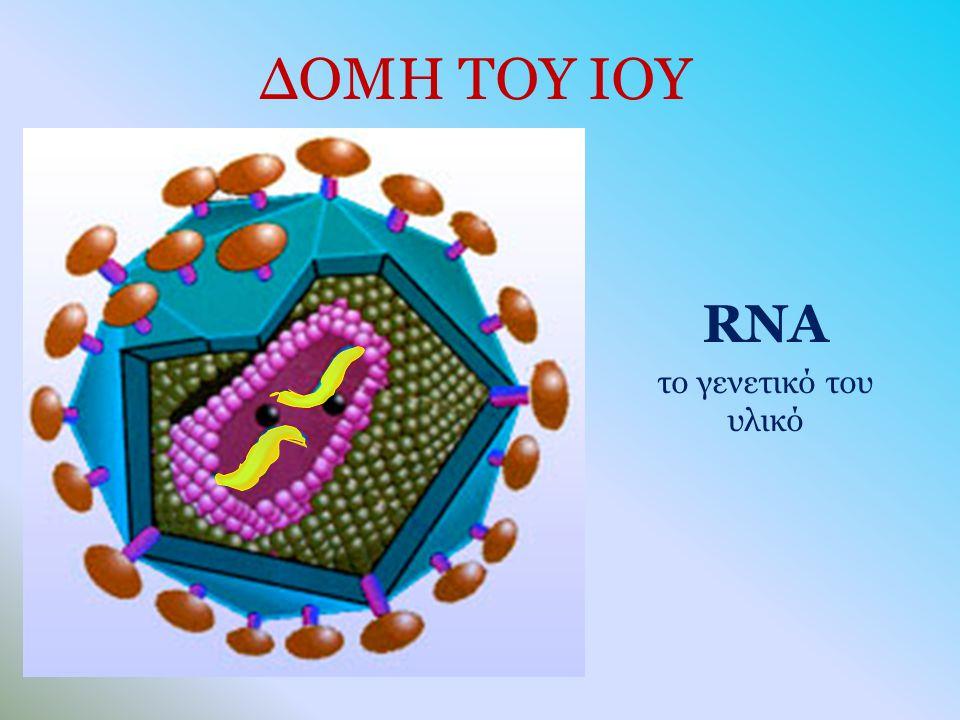 RNA το γενετικό του υλικό