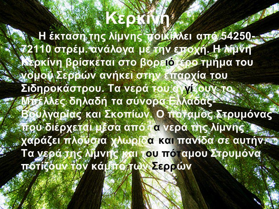 Κερκίνη