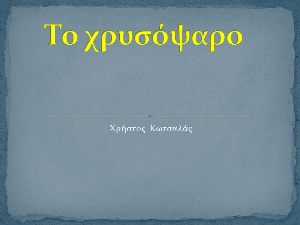 Το χρυσόψαρο Xρήστος Κωτσαλάς
