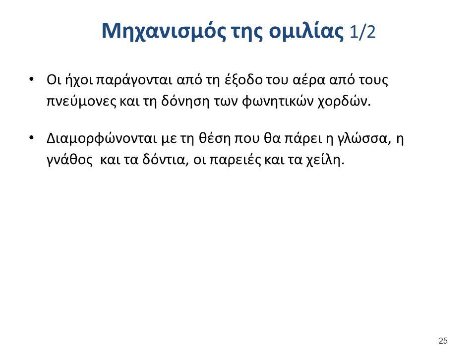 Μηχανισμός της ομιλίας 2/2