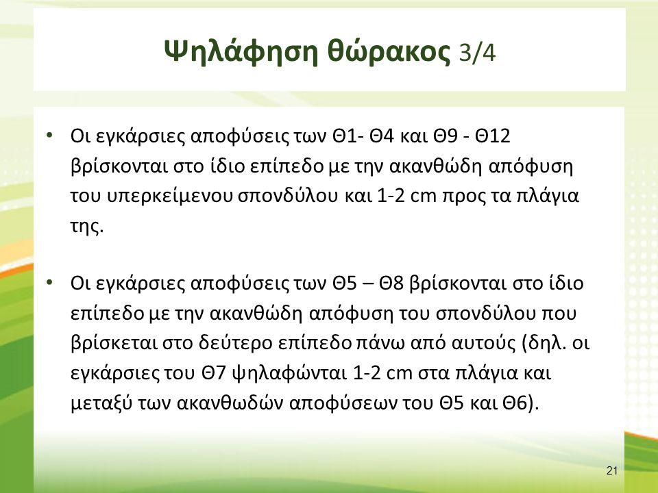 Ψηλάφηση θώρακος 4/4
