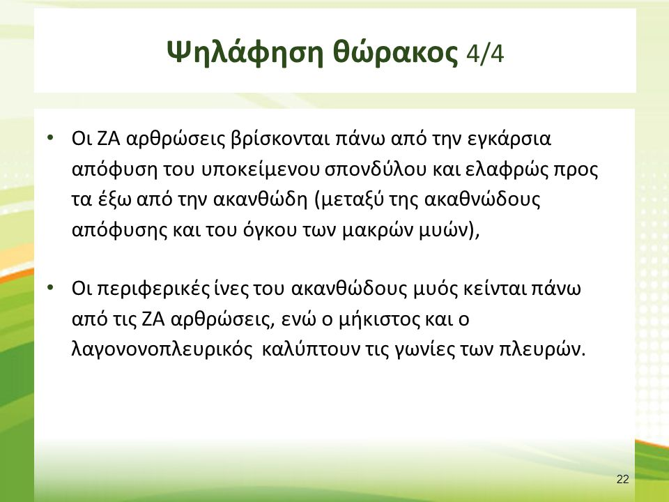 Ψηλάφηση οσφύος ptinform.blogspot.gr