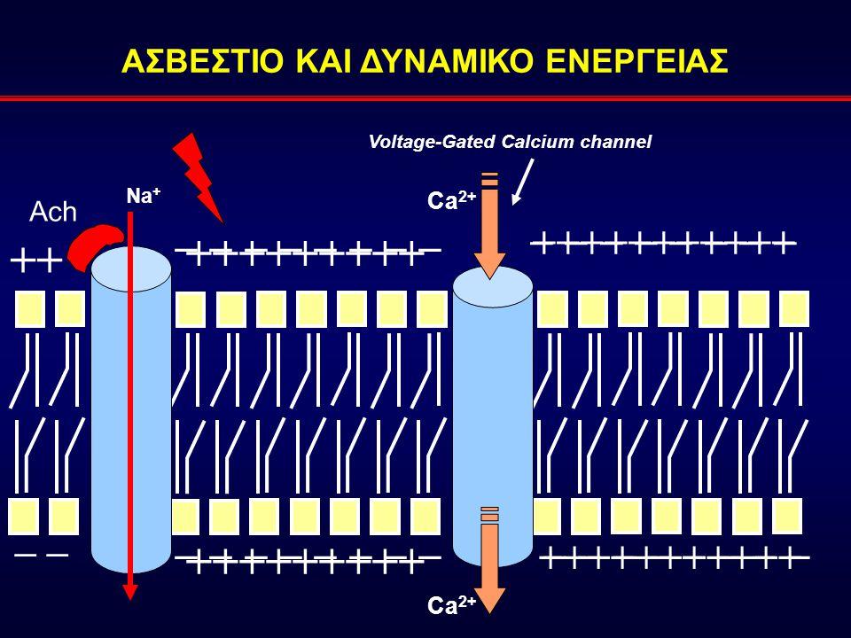 ΑΣΒΕΣΤΙΟ ΚΑΙ ΔΥΝΑΜΙΚΟ ΕΝΕΡΓΕΙΑΣ Voltage-Gated Calcium channel
