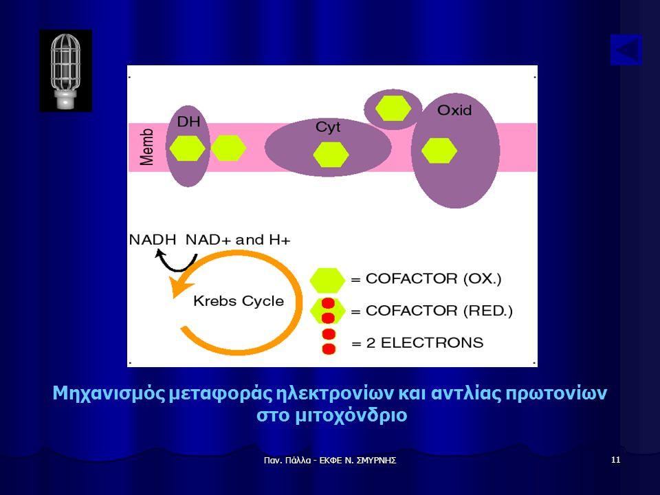 Μηχανισμός μεταφοράς ηλεκτρονίων και αντλίας πρωτονίων