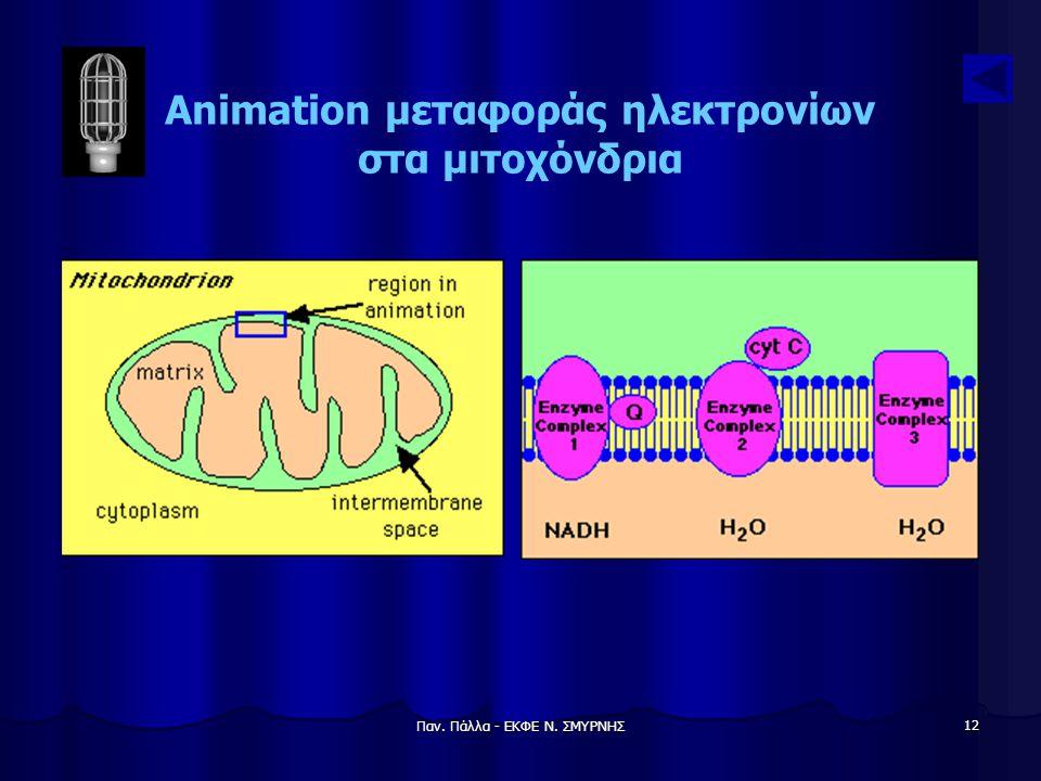 Animation μεταφοράς ηλεκτρονίων στα μιτοχόνδρια