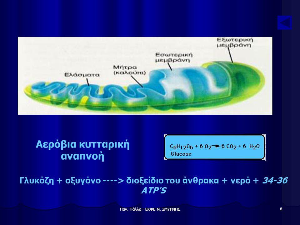 Αερόβια κυτταρική αναπνοή