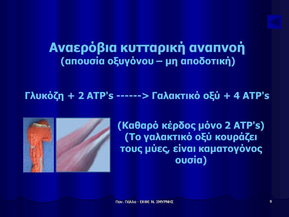 Αναερόβια κυτταρική αναπνοή