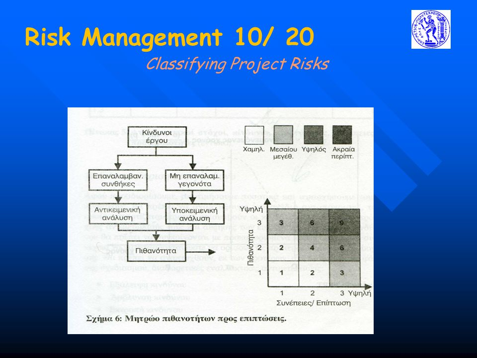 Classifying Project Risks