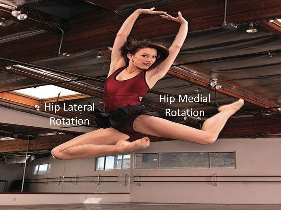 Hip Medial Rotation Hip Lateral Rotation
