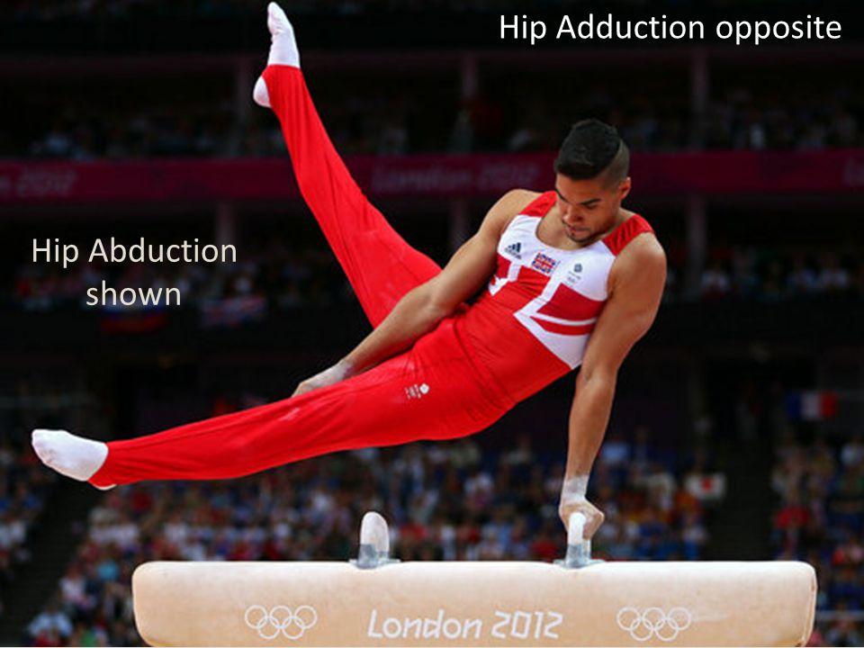 Hip Adduction opposite