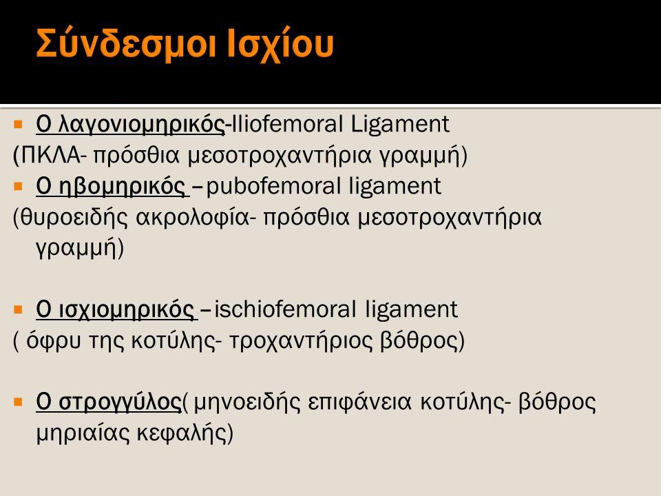 Σύνδεσμοι Ισχίου Ο λαγονιομηρικός-Iliofemoral Ligament