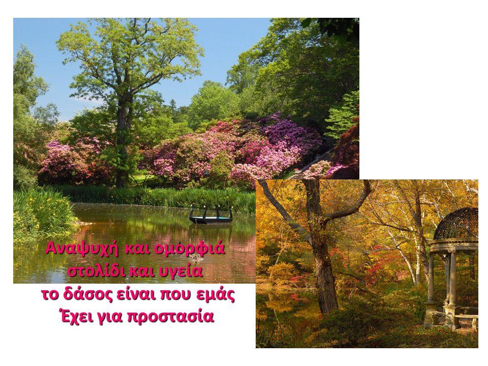 Αναψυχή και ομορφιά στολίδι και υγεία το δάσος είναι που εμάς
