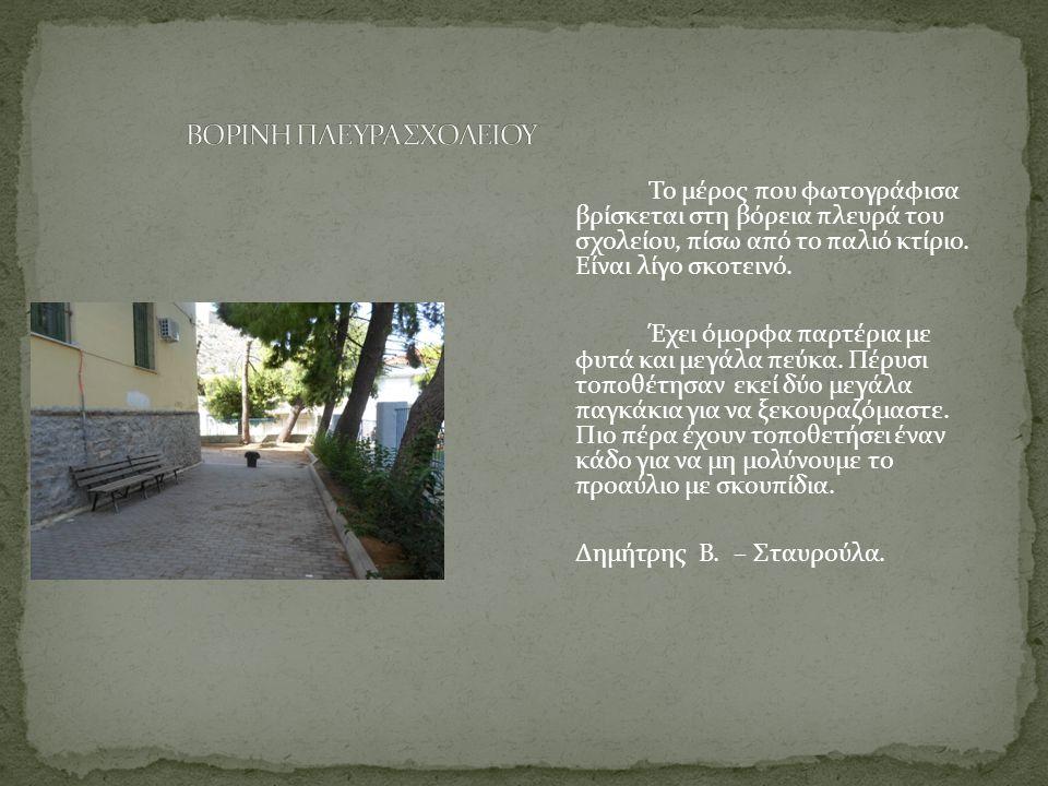 ΒΟΡΙΝΗ ΠΛΕΥΡΑ ΣΧΟΛΕΙΟΥ
