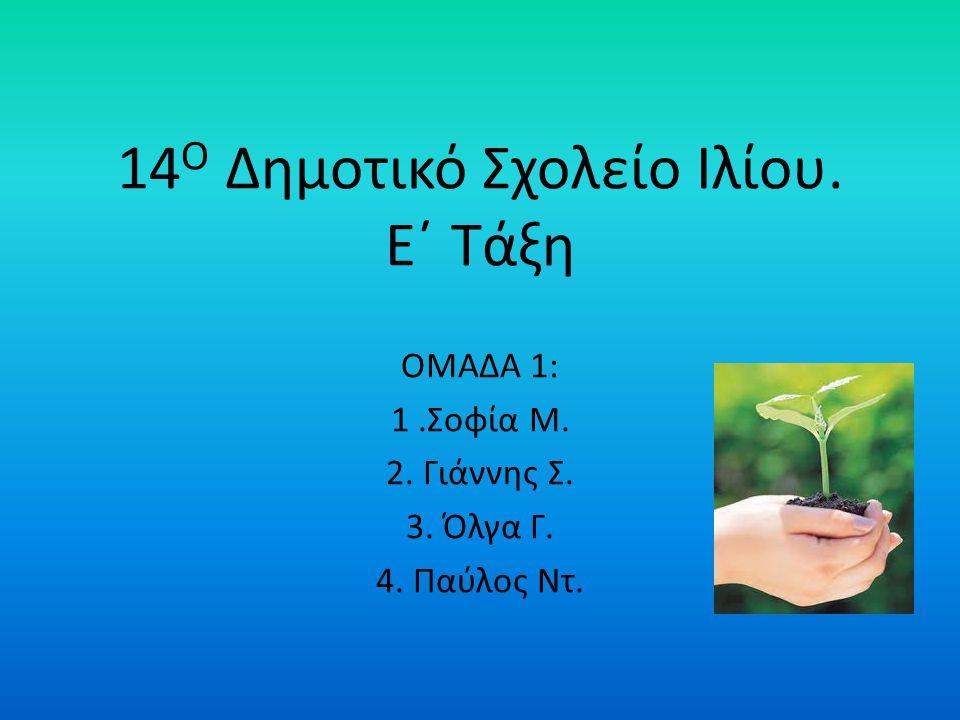 14Ο Δημοτικό Σχολείο Ιλίου. Ε΄ Τάξη