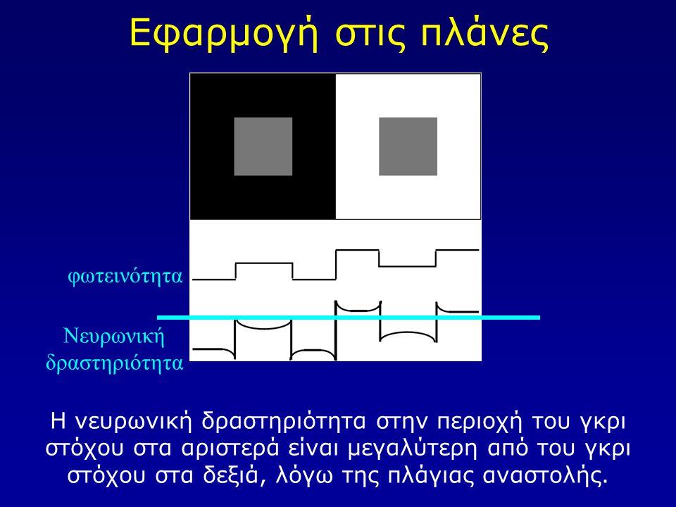 Νευρωνική δραστηριότητα