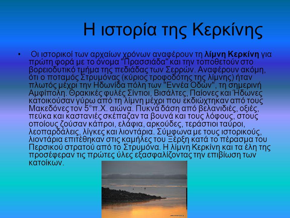 Η ιστορία της Κερκίνης