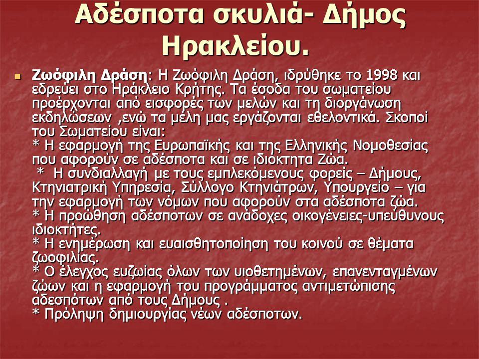 Αδέσποτα σκυλιά- Δήμος Ηρακλείου.