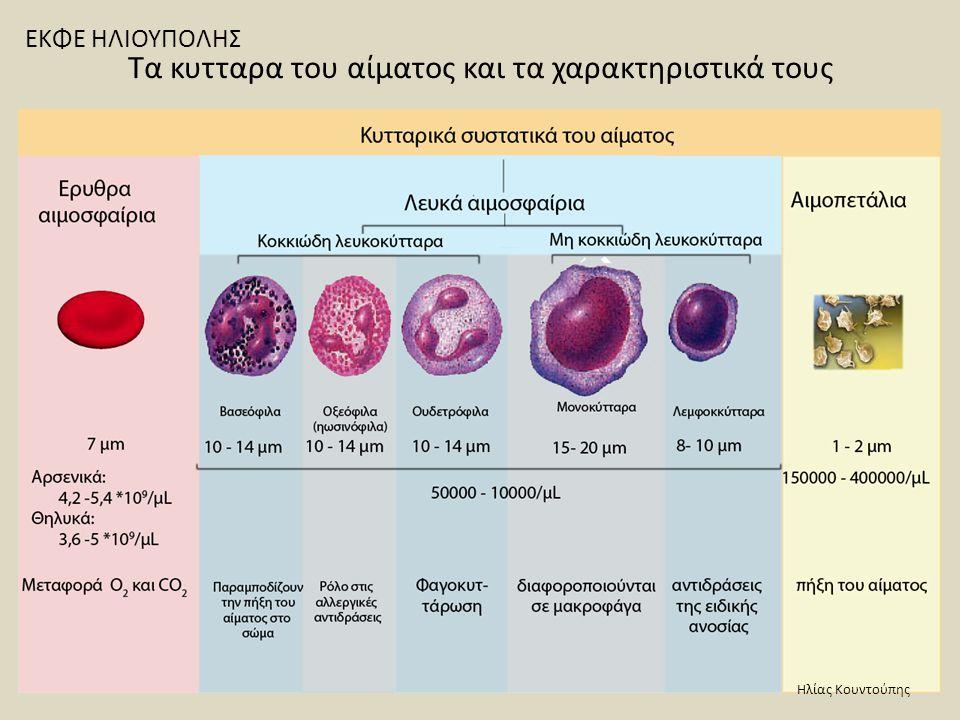 Τα κυτταρα του αίματος και τα χαρακτηριστικά τους