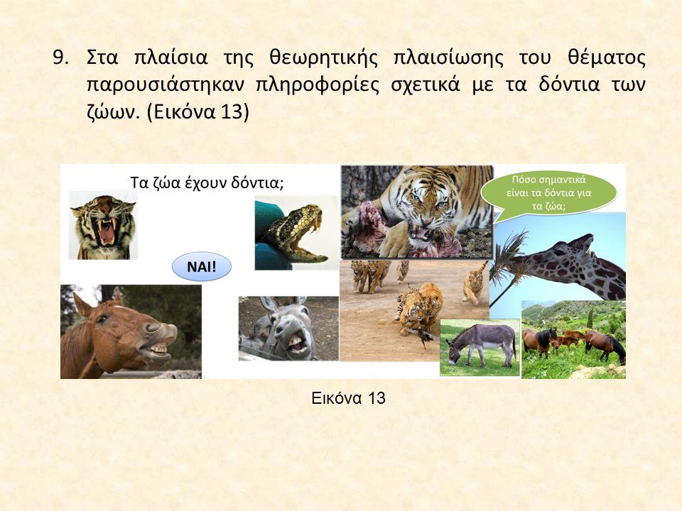 Στα πλαίσια της θεωρητικής πλαισίωσης του θέματος παρουσιάστηκαν πληροφορίες σχετικά με τα δόντια των ζώων. (Εικόνα 13)