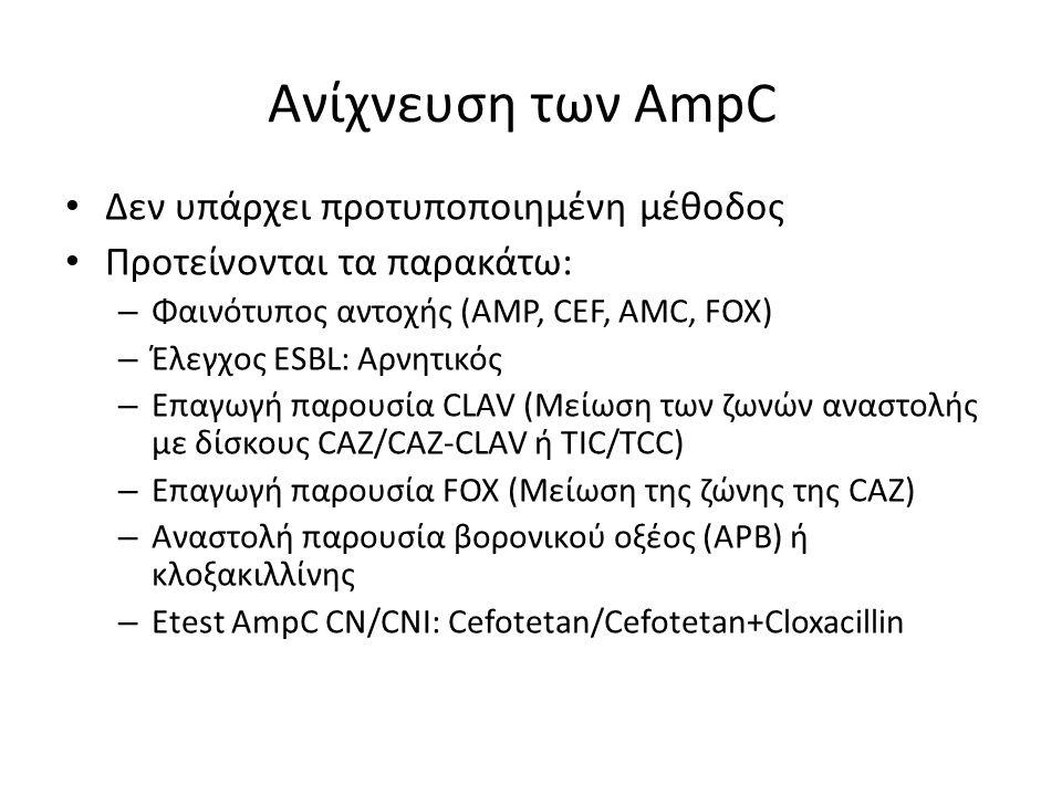 Ανίχνευση των AmpC Δεν υπάρχει προτυποποιημένη μέθοδος