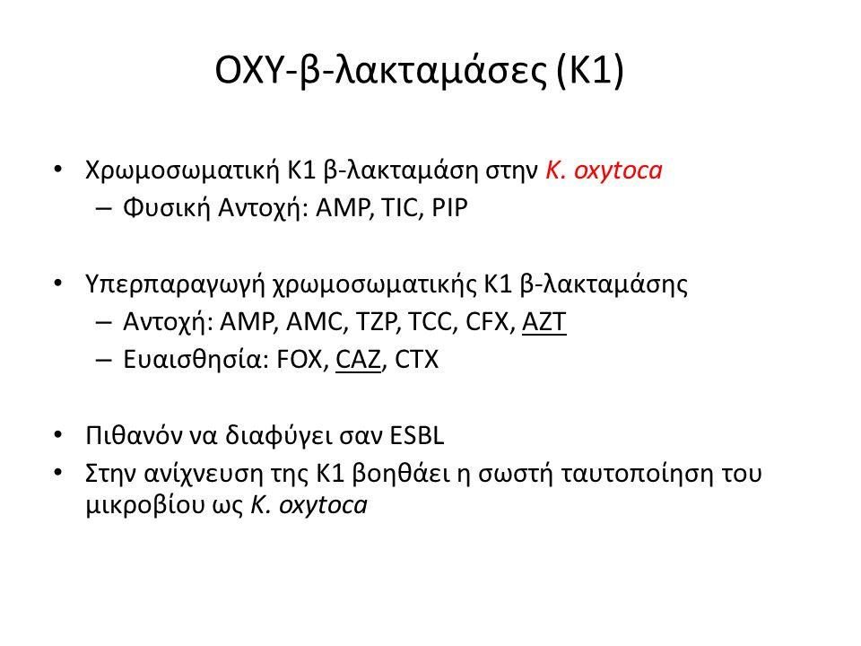 ΟΧΥ-β-λακταμάσες (Κ1) Χρωμοσωματική Κ1 β-λακταμάση στην K. oxytoca