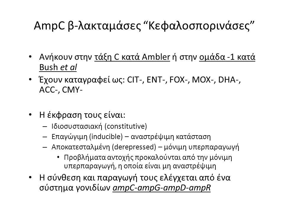 AmpC β-λακταμάσες Κεφαλοσπορινάσες