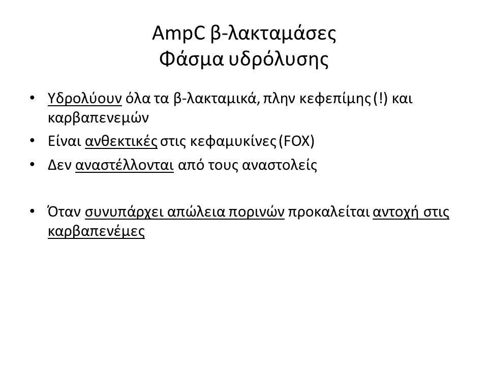 AmpC β-λακταμάσες Φάσμα υδρόλυσης