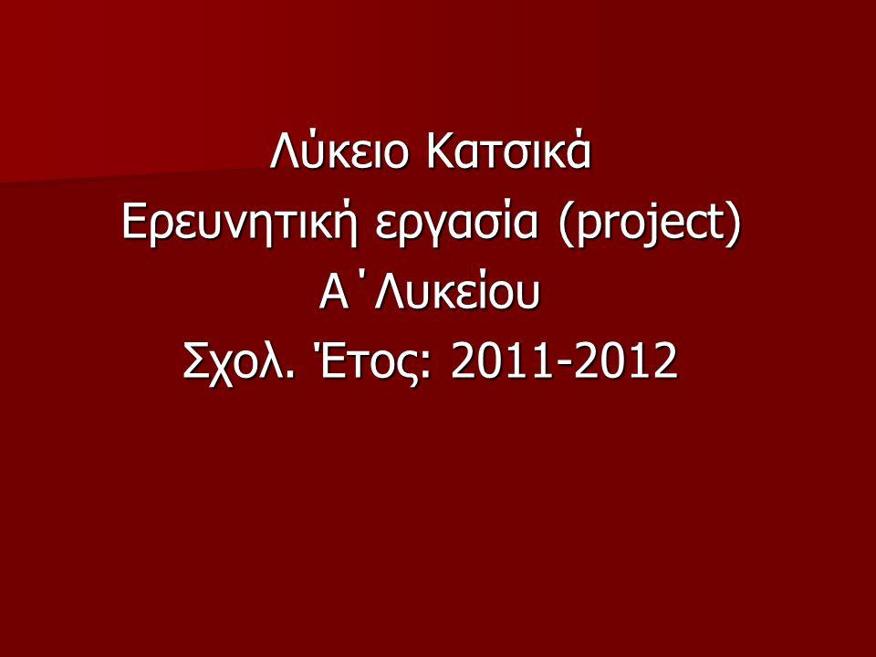 Ερευνητική εργασία (project)