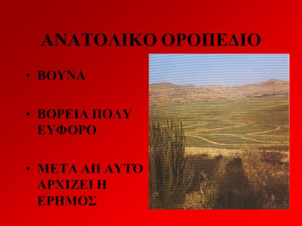 ΑΝΑΤΟΛΙΚΟ ΟΡΟΠΕΔΙΟ ΒΟΥΝΑ ΒΟΡΕΙΑ ΠΟΛΥ ΕΥΦΟΡΟ