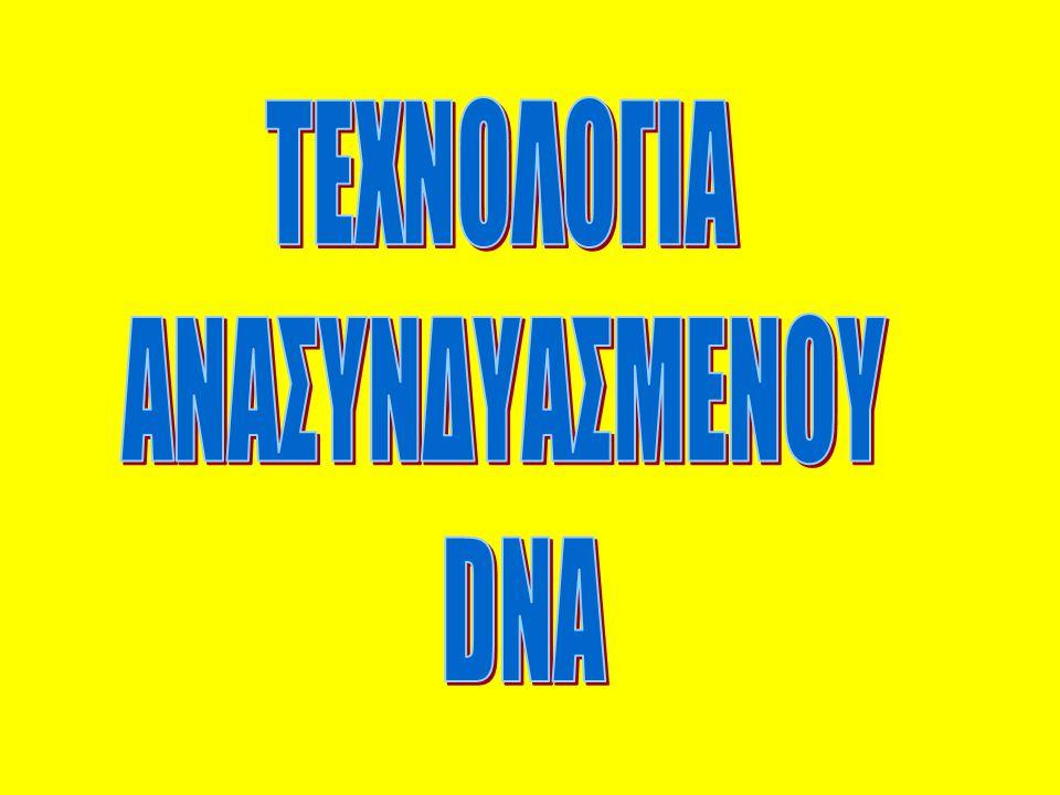 ΤΕΧΝΟΛΟΓΙΑ ΑΝΑΣΥΝΔΥΑΣΜΕΝΟΥ DNA