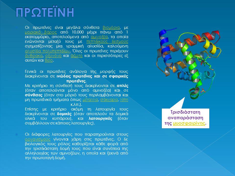 Τρισδιάστατη αναπαράσταση της μυοσφαιρίνης.