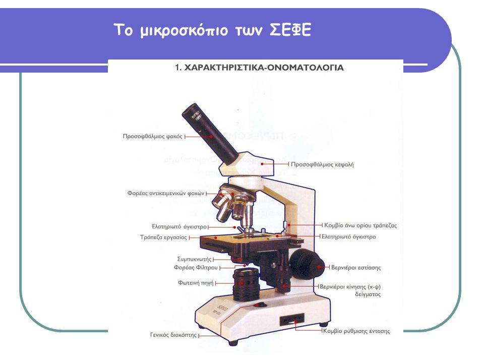 Το μικροσκόπιο των ΣΕΦΕ