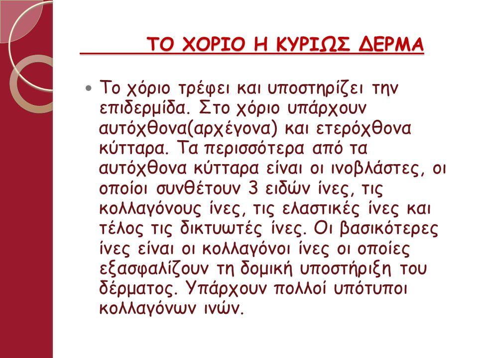 ΤΟ ΧΟΡΙΟ Η ΚΥΡΙΩΣ ΔΕΡΜΑ