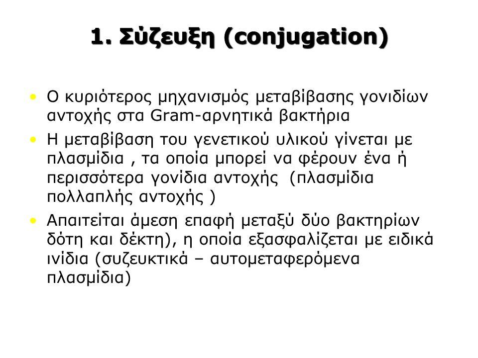 1. Σύζευξη (conjugation)