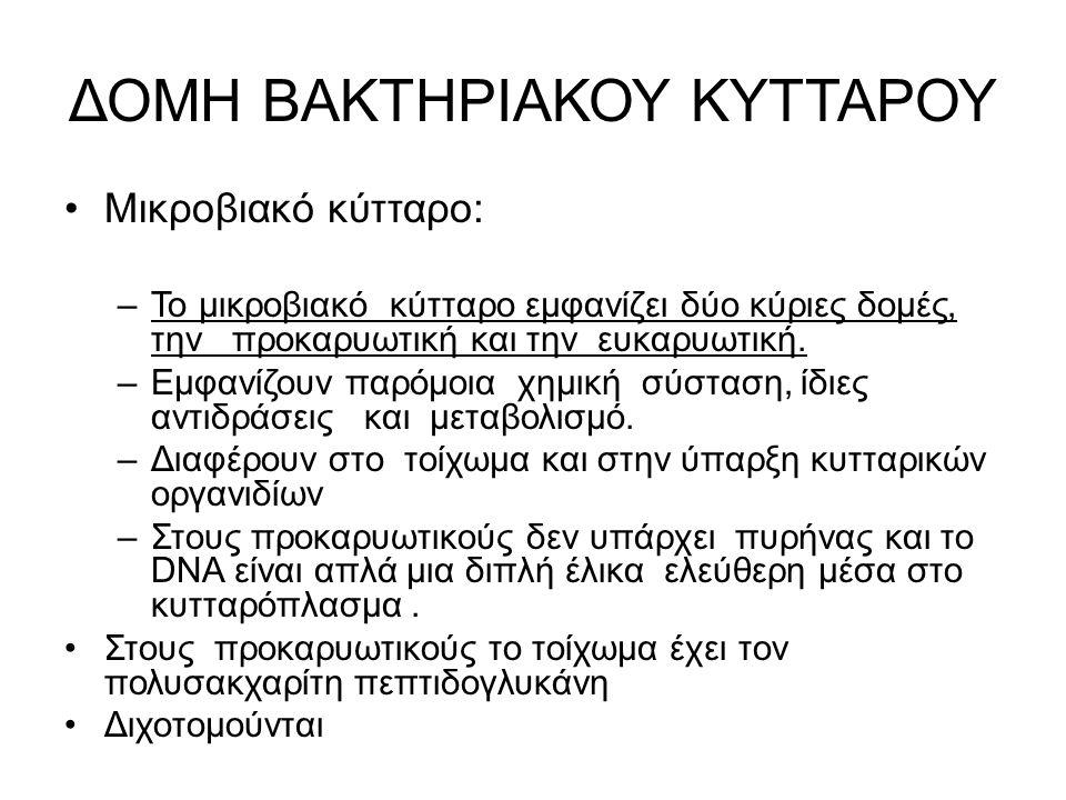ΔΟΜΗ ΒΑΚΤΗΡΙΑΚΟΥ ΚΥΤΤΑΡΟΥ