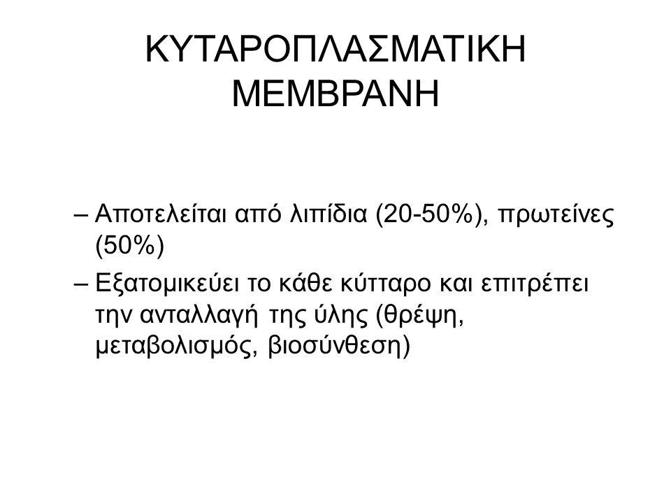 ΚΥΤΑΡΟΠΛΑΣΜΑΤΙΚΗ ΜΕΜΒΡΑΝΗ