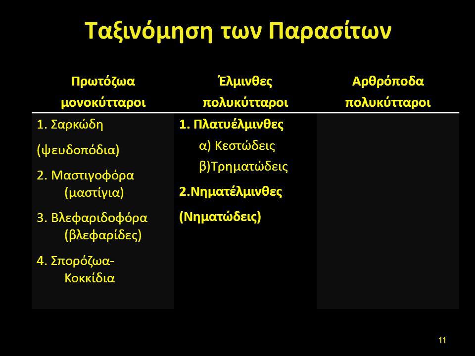 Πρωτόζωα Σαρκώδη (ψευδοπόδια) Μαστιγοφόρα (μαστίγια)