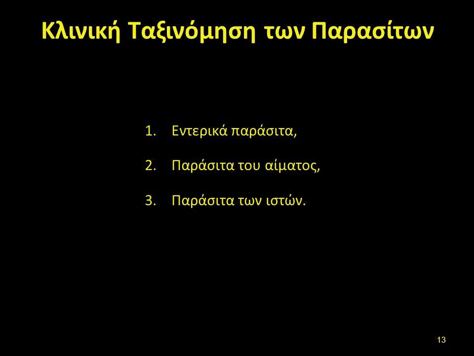 Taenia solium , από Citron διαθέσιμο ως κοινό κτήμα