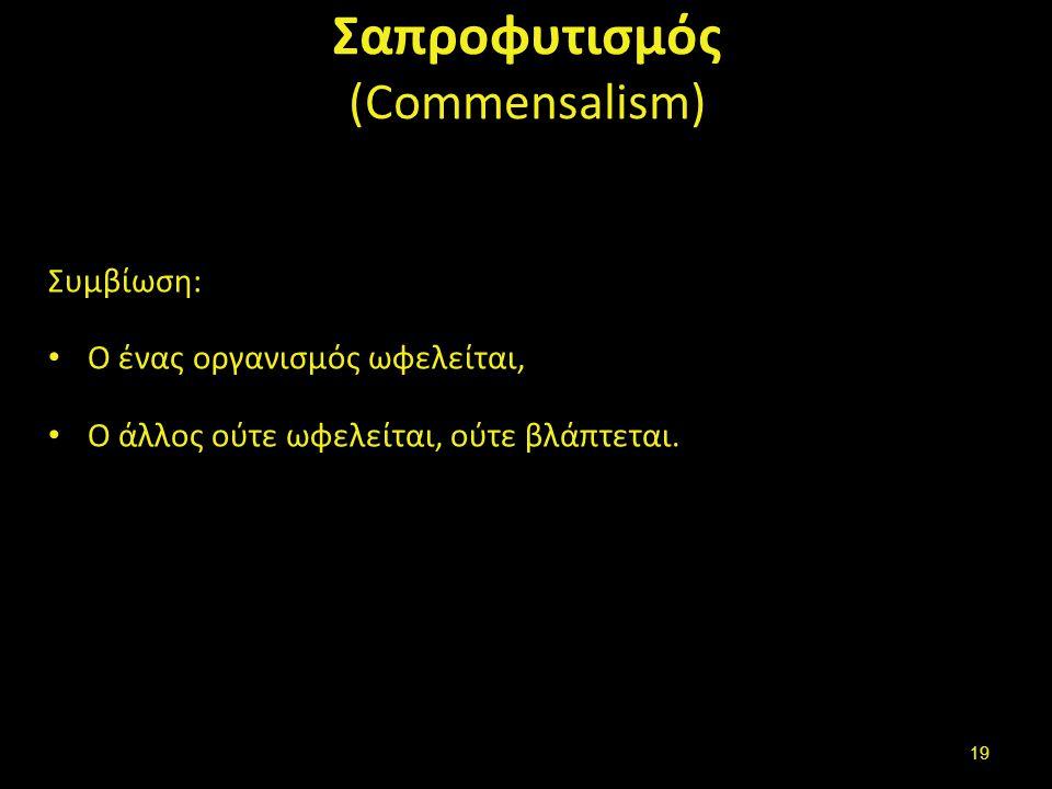 Παρασίτωση (parasitosis)