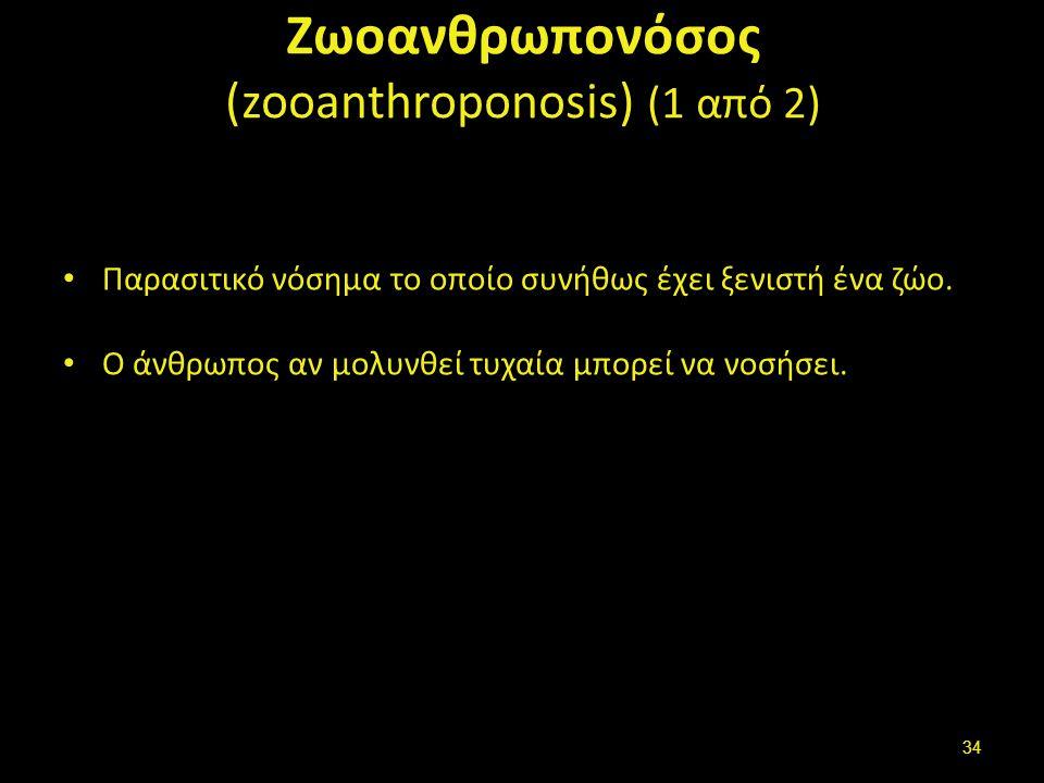 Ζωοανθρωπονόσοι (2 από 2)