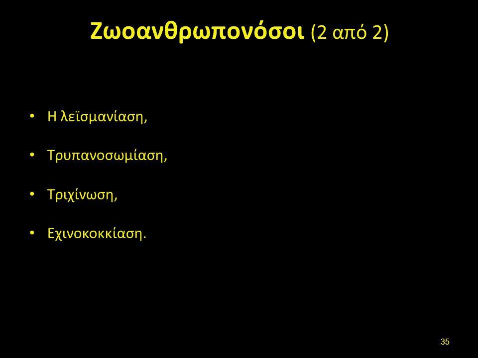 Ενδο (εσω) παράσιτα (endoparasites) (1 από 2)