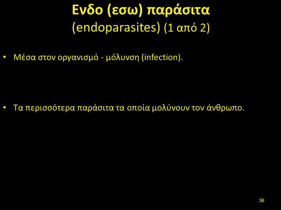 Ενδο (εσω) παράσιτα (2 από 2)